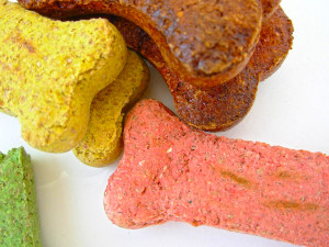 Picture of dog treats