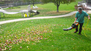 Owner Ed blowing leaves at the dogwoods