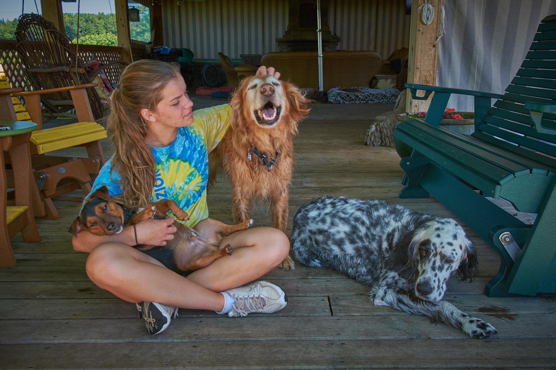 Smiling Dog At The Dogwoods Mount Horeb, WI